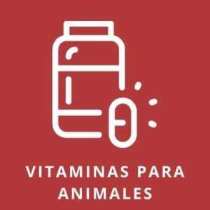 Vitaminas para animales